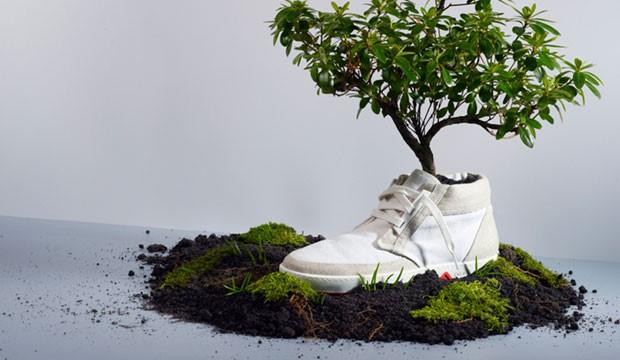 OAT-shoes